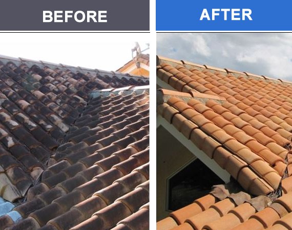 That's not a new roof in the after photo. Our roof washing services will rejuvenate and restore your roof. Learn More >